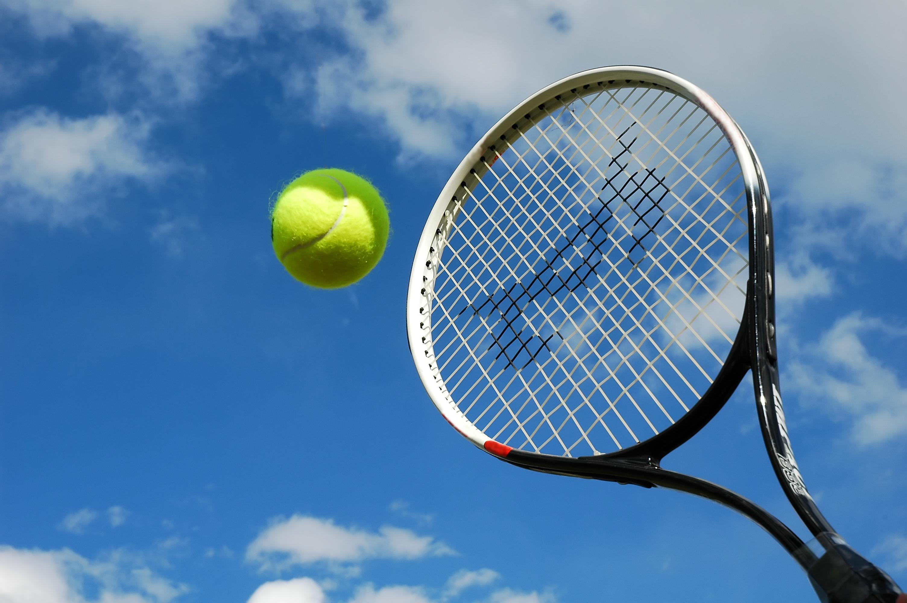 """""""tennis""""的图片搜索结果"""